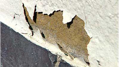 Schäden An Der Fassade Reparieren