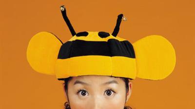 Doit-tv-halloween-kostüme-selber-machen-Fliege