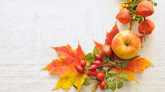 Einrichtungstipps Für Den Herbst