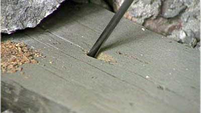 Dachsanierung: Holzuntersuchung